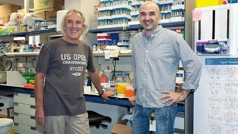 Miembros de la Investigación (Foto: CNIO)